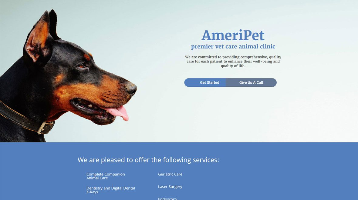 Divi Layout for Pet Business